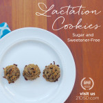 21DSD-Coach-Guest-Post-Square-Reddy-LactationCookies